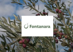 Fontanara goes Germany